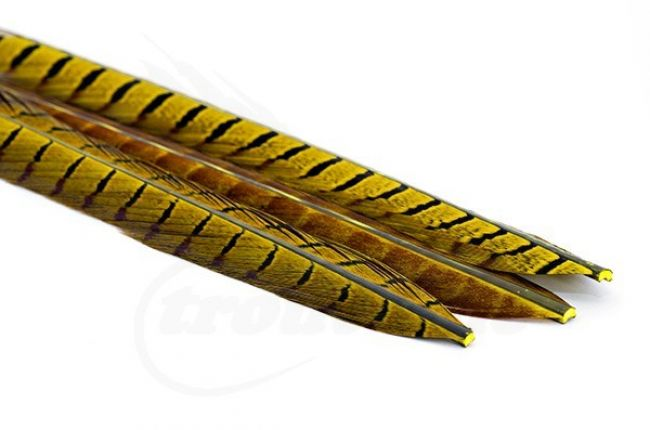 Picric Dyed Selected Pheasant Tails